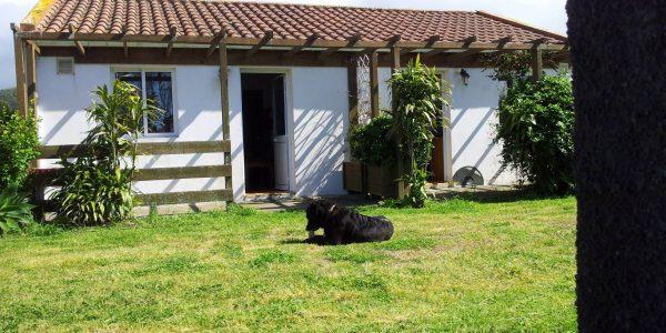 Kikis Azoren Ferienhaus Casa Azul und Casa Verde