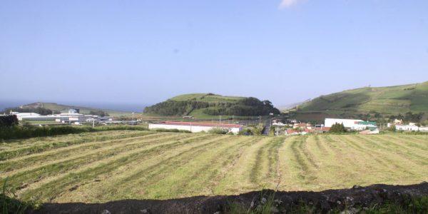 Kikis Azoren Garten Blick auf grüne Hügel