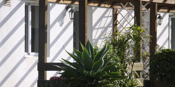 Kikis Azoren Ferienhaus