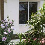 Kikis-Azoren Garten