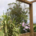 Kikis-Azoren Garten Blick vom Ferienhaus