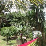Kikis-Azoren Garten Hängematte unter Palmen