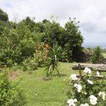 Kikis-Azoren Garten Blick auf den Atlantik